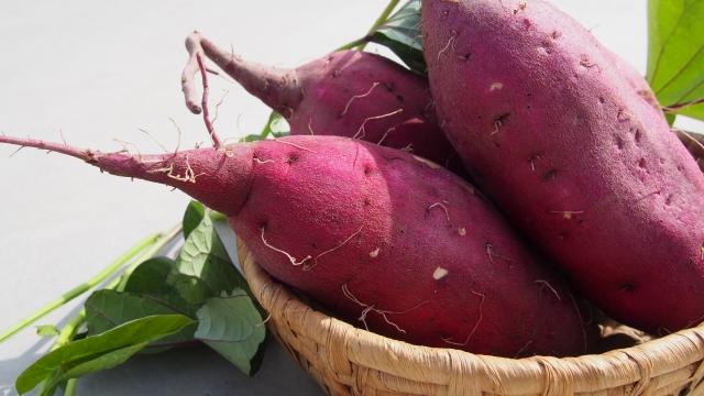 便秘解消の食べ物|サツマイモ