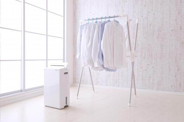 洗濯物の臭いの取り方|除湿器を使う