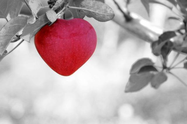 倦怠期を乗り越えるには、静かな愛もある!
