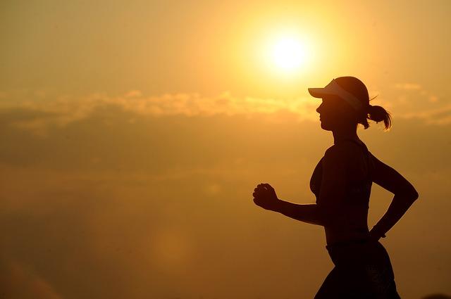 有酸素運動 | 内臓脂肪の見た目