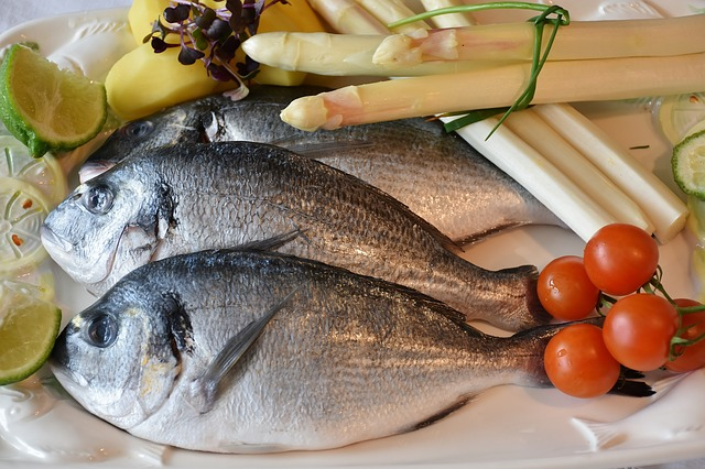 食事 | 内臓脂肪の見た目