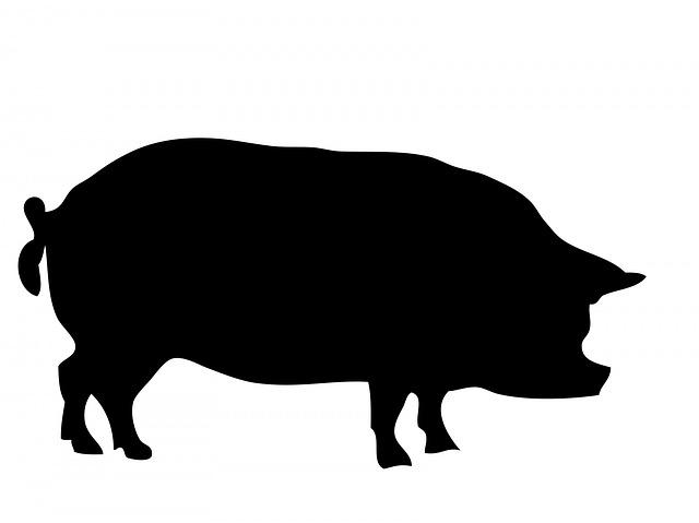 内臓脂肪型肥満の特徴、いくつ当てはまる?